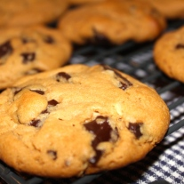 Peanut Butter & Chocolate Chunk Cookies