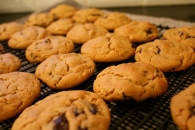 Chewy Peanut Butter & Chocolate Chunk Cookies